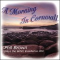 Phil Brown - A Morning in Cornwall