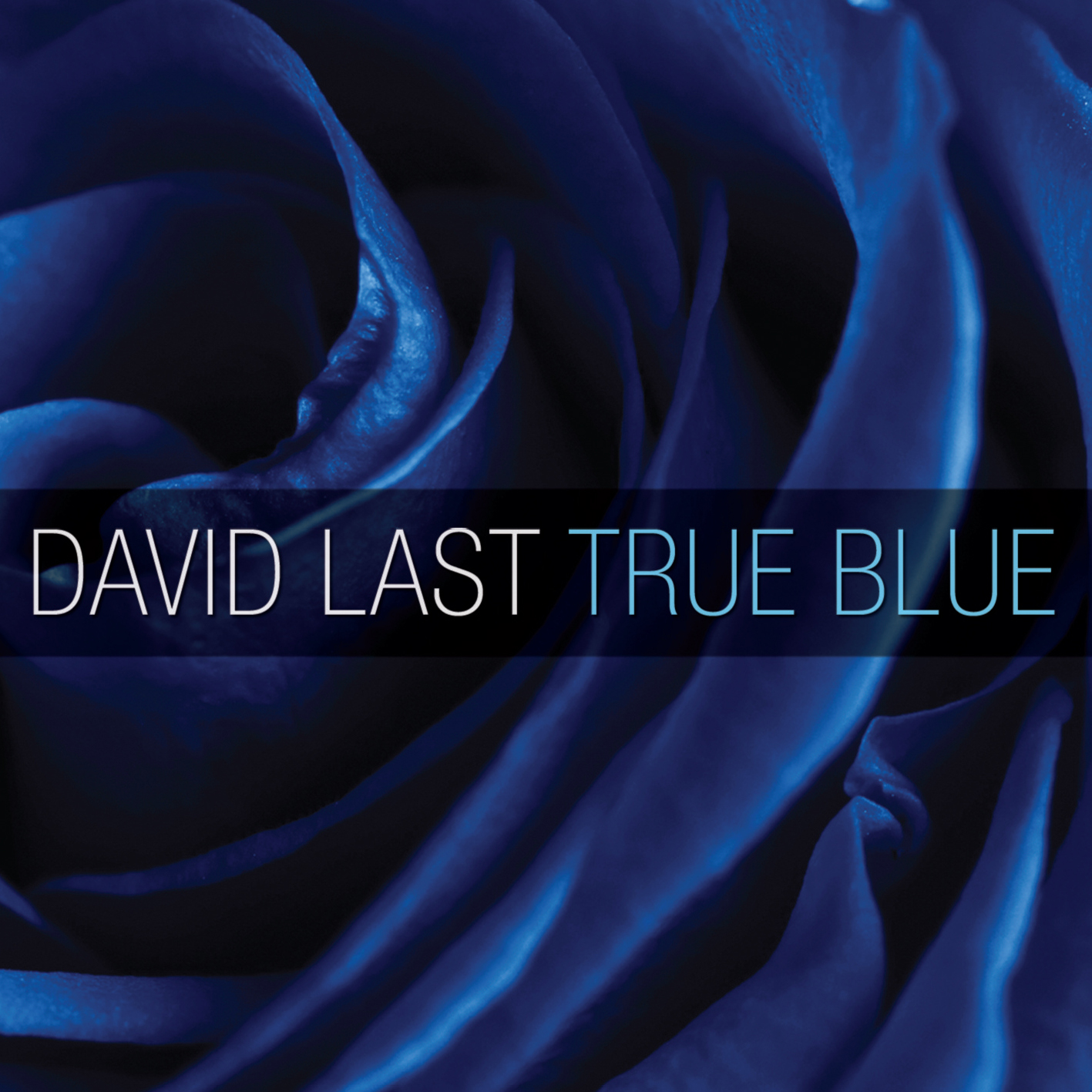 True Blue by David Baldacci (2010, Paperback)