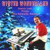 Jason Lee - Winter Wonderland