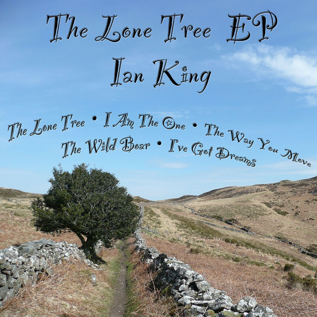 The Lone Tree EP Cover (Big)